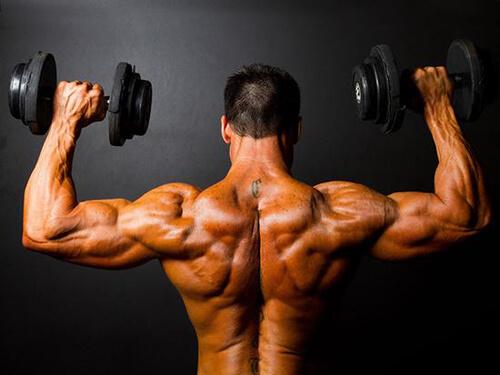 Tập cơ sau cho nam giới
